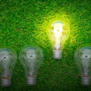 descarbonización y neutralidad en carbono