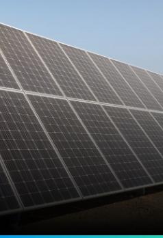 neutralidad en carbono