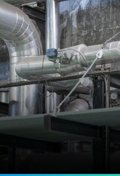 neutraliad en carbono